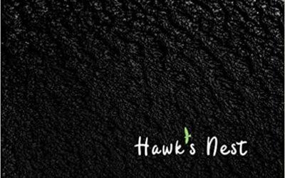 Hawk's Next