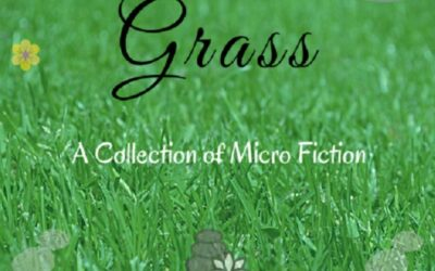 Pebbles in the Grass by Srivalli Rekha – Book Reading Experience